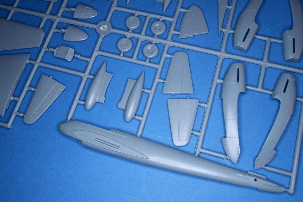 DSC_0819.thumb.JPG.9aa0e142312011f19470eda798103a6b.JPG